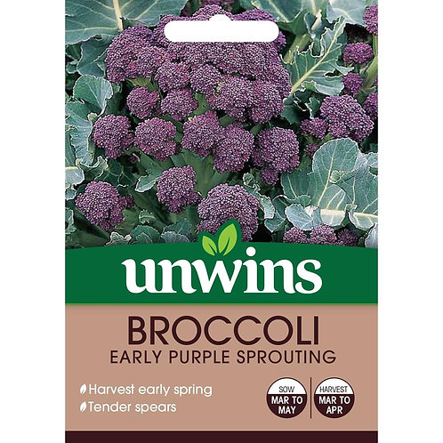 Broccoli Early Purple Sprouting (Unwins)