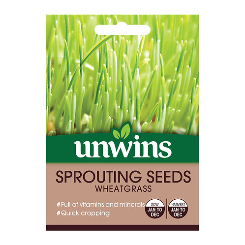 Unwins Sprouting Seeds Wheatgrass - Approx 400 Seeds