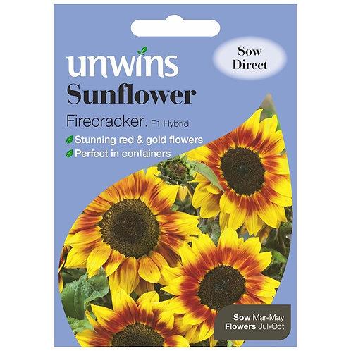 Unwins Sunflower Firecracker F1 - Approx 12 Seeds