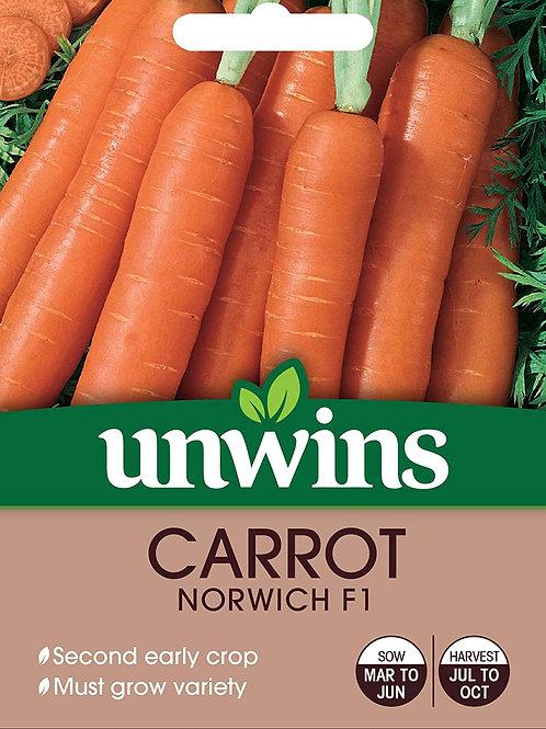 Carrot Norwich F1 (Unwins)