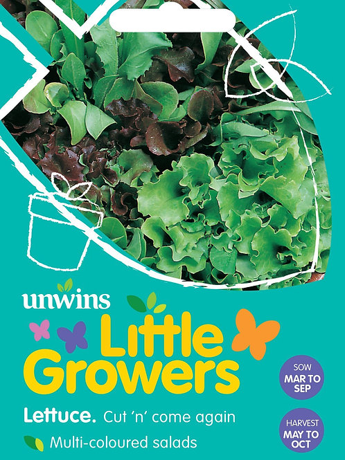 Unwins Little Growers Lettuce Cut 'N' Come Again - Approx 500 Seeds