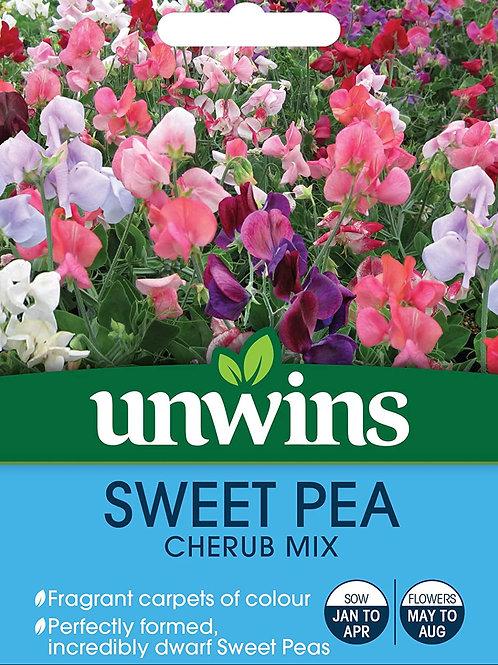 Unwins Sweet Pea Cherub Mix - Approx 10 Seeds
