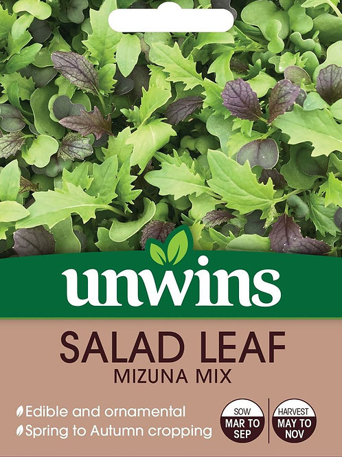 Unwins Salad Leaf Mizuna Mix - Approx 500 Seeds
