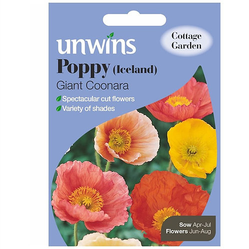 Unwins Poppy (Iceland) Giant Coonara - Approx 1000 Seeds