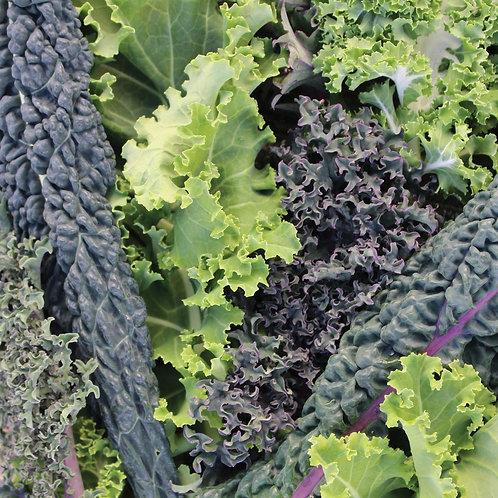 Kale Superfood Mix (Unwins)
