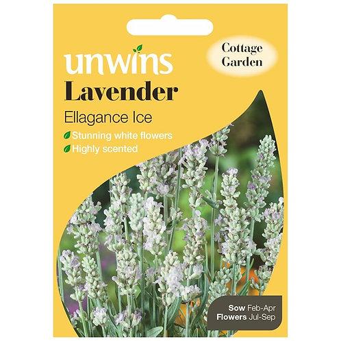 Unwins Lavender Ellagance Ice - Approx 20 Seeds