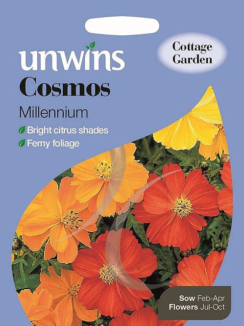 Unwins Cosmos Millenium - Approx 80 Seeds