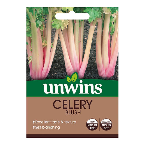 Unwins Celery Blush - Approx 100 Seeds