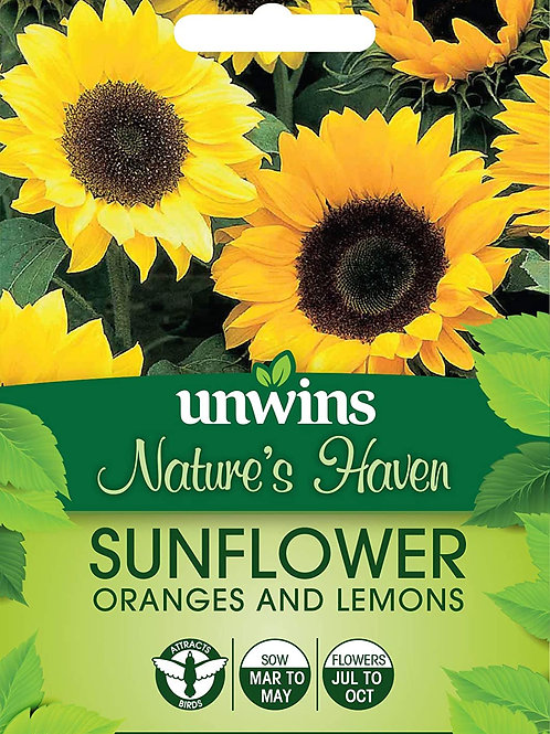 Unwins Nature's Haven Sunflower Oranges and Lemons - Approx 20 Seeds