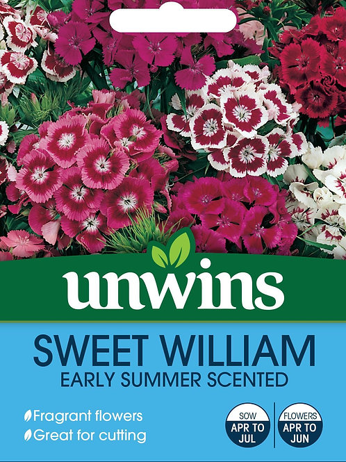 Unwins Sweet William Early Summer Scented - Approx 450 Seeds