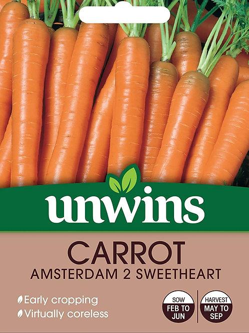 Carrot Amsterdam 2 Sweetheart (Unwins)