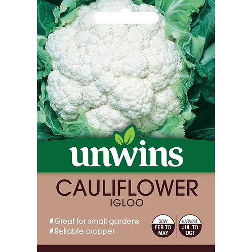Unwins Cauliflower Igloo - Approx 75 Seeds