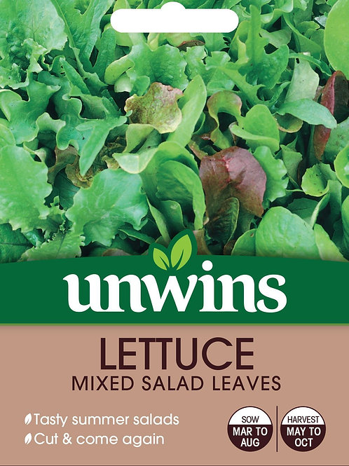 Unwins Lettuce Mixed Salad Leaves - Approx 1000 Seeds