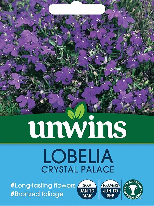 Unwins Lobelia Crystal Palace - Approx 1000 Seeds