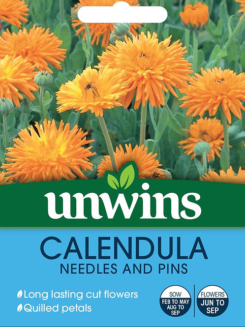 Unwins Calendula Needles And Pins - Approx 200 Seeds
