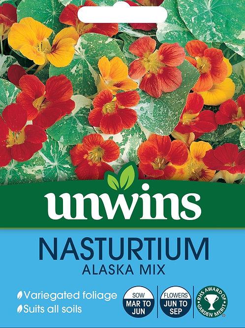 Unwins Nasturtium Alaska Mix - Approx 30 Seeds