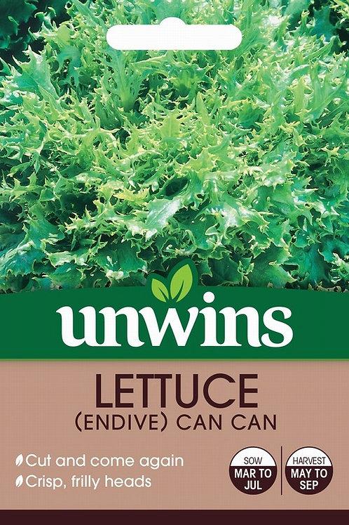 Lettuce (Endive) Can Can (Unwins)