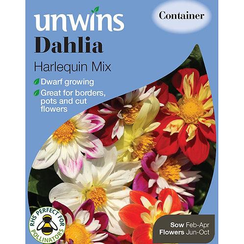 Unwins Dahlia Harlequin Mix - Approx 40 Seeds