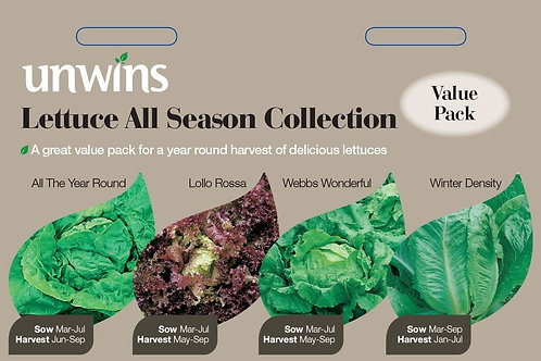 Unwins Lettuce All Season Collection - 4 Varieties