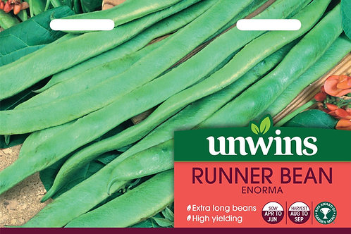 Unwins Runner Bean Enorma - Approx 40 Seeds
