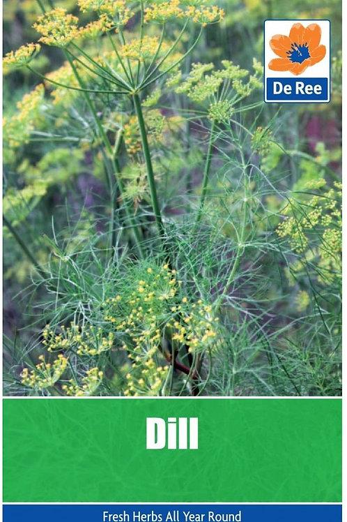 De Ree Dill Seeds