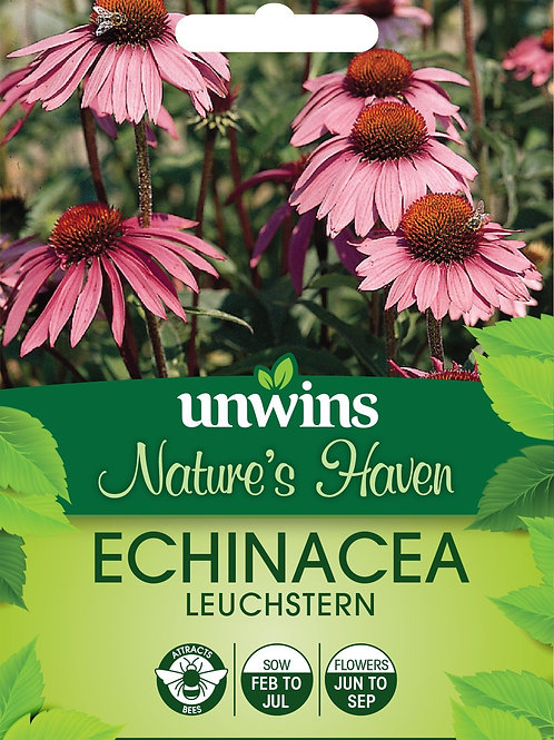 Unwins Nature's Haven Echinacea Leuchstern - Approx 50 Seeds