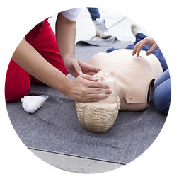 Basic First Aid, CPR, First Aid Training