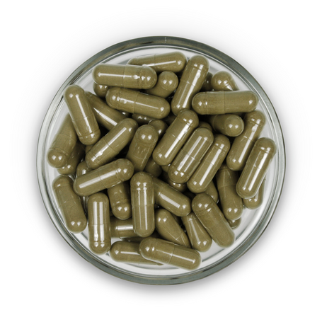 ProductPhotos_capsules-GreenMalay.png