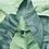 Thumbnail: Mikró onyx