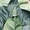 Thumbnail: Mikró saffier