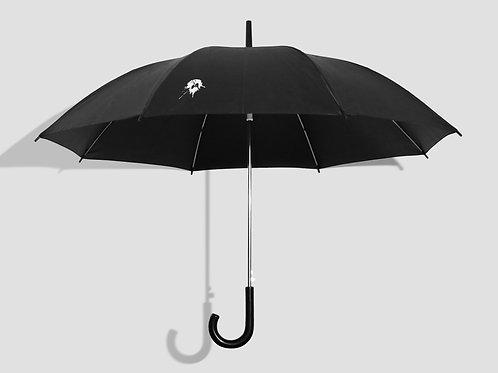 Зонт уже с голубиной какашкой