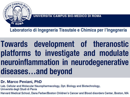 Theranostic platforms in neurodegenerative diseases…and beyond