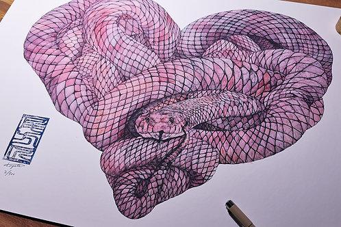 SNAKE [蛇]