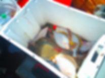 камбала ящик.jpg