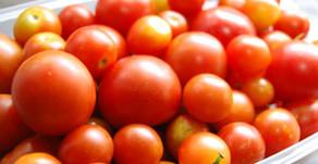 侵入者とドライトマト