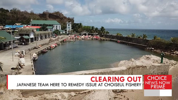 JAPANESE TEAM HERE TO REMEDY ISSUE AT CHOISEUL FISHERY