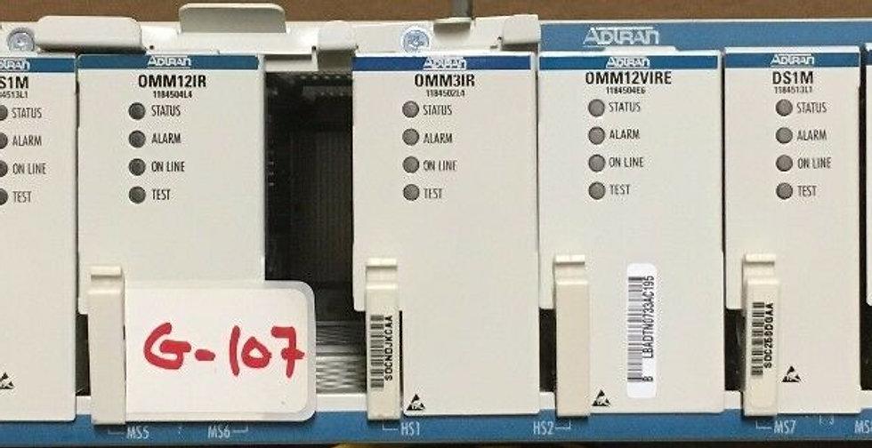 Adtran OPTI-6100 W SCM,DS1VME,DS1M,OMM12R,DS1VM,TRAM3C modules +