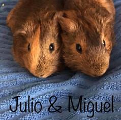 Julio & Miguel