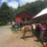 Summer Horse Camp 2018