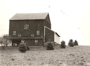 Main Barn with shed