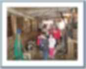 tours_g1_p161.jpg