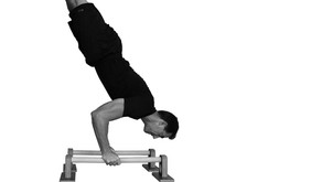 Build a Handstand Press Trainer?