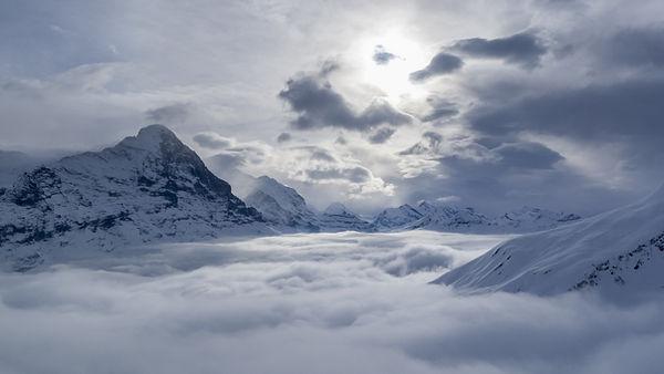 The Mists.jpg