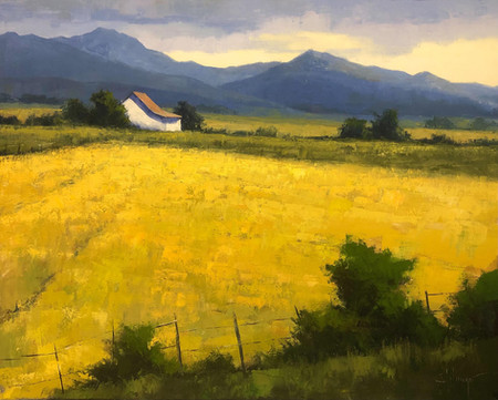 Canola Field and a House