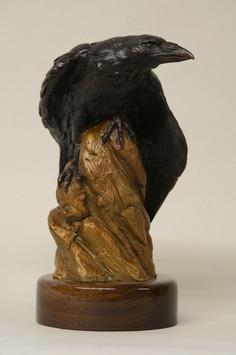 Snake River Raven