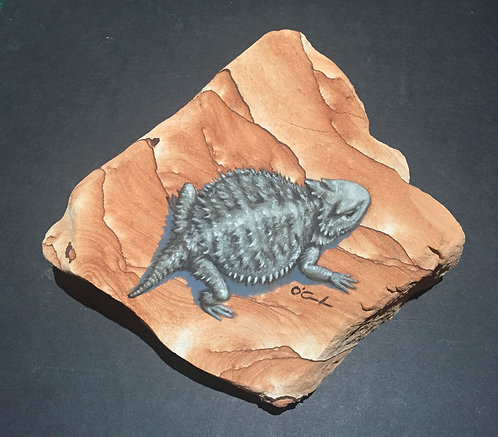 Horney Toad on Sandstone by Jennifer O'Cualain