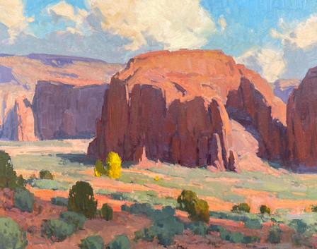 Desert Forms
