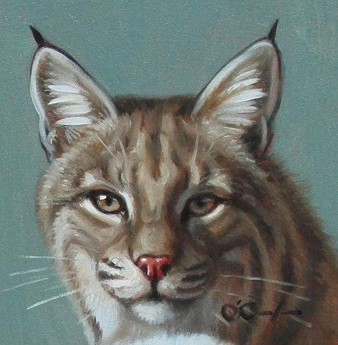 Bob Cat Mini by Jennifer O'Cualain