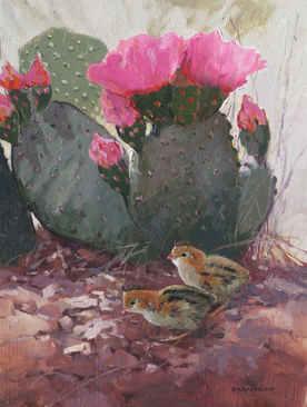 Adele Earnshaw