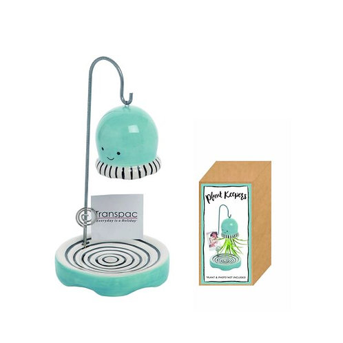 Dol Hanging Jellyfish Plant Keeper/Photo Holder 4 x 4 x 8 in.